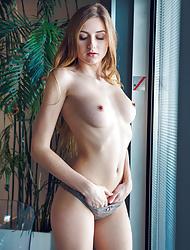 Blonde Amelia Gin poses wearing only sheer panties before undressing
